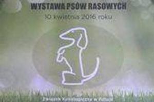 wystawa-psow-rok-2016-07
