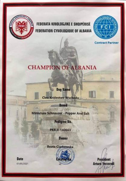 Zawody Albania 3
