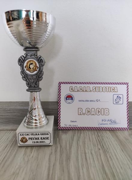 Puchar Serbia 2021
