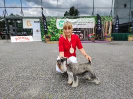 warminsko-mazurska-wystawa-psow-rasowych-2021-2