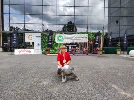 warminsko-mazurska-wystawa-psow-rasowych-2021